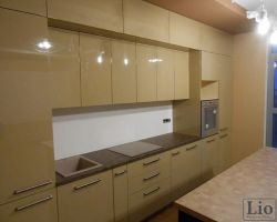 Virtuvės baldai 827