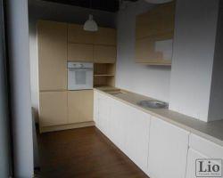 Virtuvės baldai 913