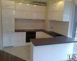 Virtuvės baldai 966