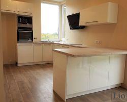 Virtuvės baldai 580