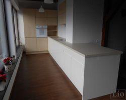 Virtuvės baldai 912