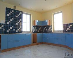 Virtuvės baldai 923
