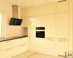 Virtuvės baldai 491