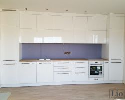Virtuvės baldai 496