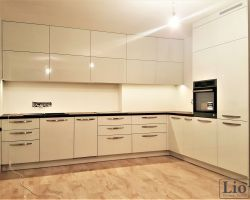Virtuvės baldai 460