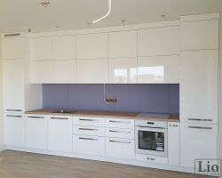 Virtuvės baldai 495